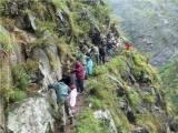 Uttarakhand rescue operation